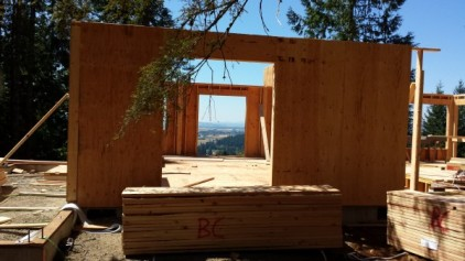 New Cottage in the Woods - Framing the house (14)