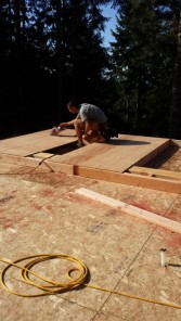 New Cottage in the Woods - Framing the house (2)