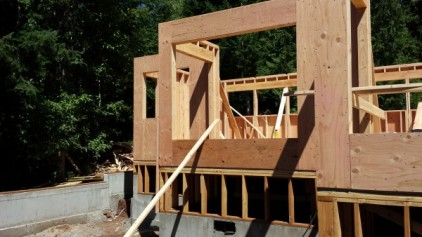 New Cottage in the Woods - Framing the house (21)