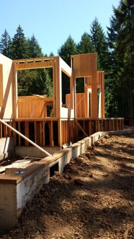 New Cottage in the Woods - Framing the house (23)