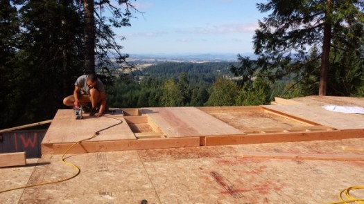New Cottage in the Woods - Framing the house (3)