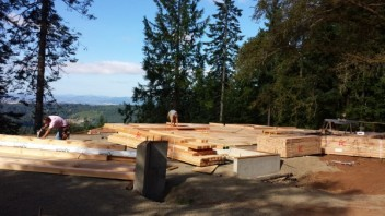 New Cottage in the Woods - Framing the house (4)